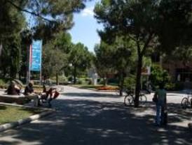Ocio en parques para jóvenes de Leganés