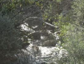 El Aurrulaque pide más protección para la Sierra de Guadarrama