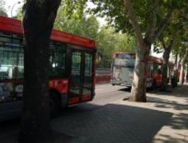 Las líneas 4, 8 y 19 de la EMT modifican su itineraio a partir de este sádabo