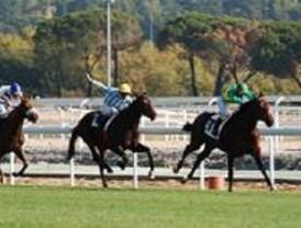 Tercera jornada de carreras nocturnas en el Hipódromo de La Zarzuela