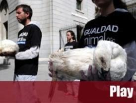 Igualdad Animal protesta frente a Agricultura por el 'foie gras' 'made in Spain'