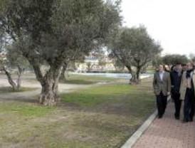 El PRISMA remodelará los parques de Sevilla la Nueva