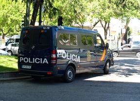 Dos detenidos por al menos 32 hurtos