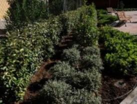 Desempleados de La Elipa aprenden jardinería
