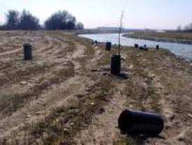 Paracuellos acusa a AENA de no cumplir la declaración de impacto medioambiental