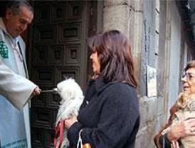 La iglesia de San Antón acogerá este sábado la tradicional bendición de mascotas
