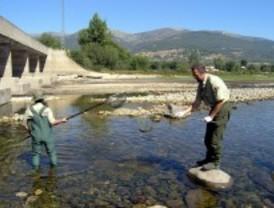 Multas de menos de 15 euros para pescadores