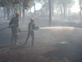 Un incendio afecta a cinco hectáreas de la Dehesa de Majadahonda