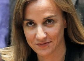 La Presidencia de IU Federal se reúne este lunes tras la salida de Tania Sánchez