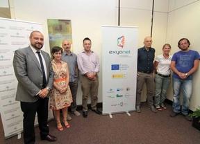 Meridianos liderará un proyecto de inserción laboral a nivel europeo