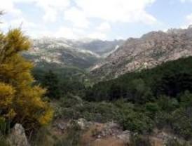 Actividades ambientales para celebrar el Día Europeo de los Parques