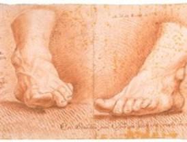 Colección de Dibujos Anatómicos de la Facultad de Bellas Artes de la Universidad Complutense