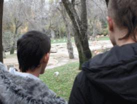 Madrid registró 1.425 denuncias contra menores de 14 años en 2008
