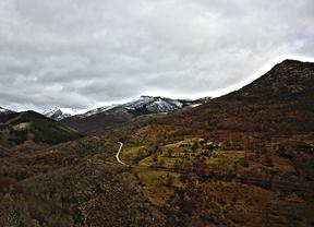Una nueva ruta guiada en el Hayedo de Montejo