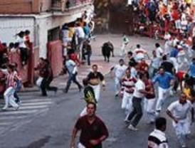 Los encierros de las fiestas de Pinto finalizan sin incidentes