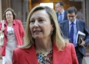 Tomás Gómez y Amparo Valcárcel del PSOE llegan a la Asamblea