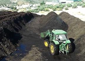 El alperujo compostado contribuye a recuperar los suelos de mina
