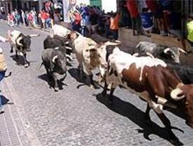 Muere un espectador en el encierro de Campo Real al ser arrollado por un toro