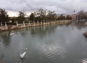 Aranjuez insta a los vecinos a no bañarse en el río