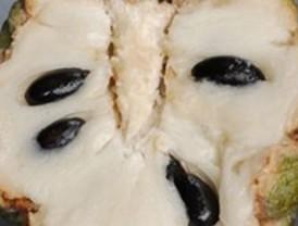 Un gen determina la presencia de pepitas en la fruta