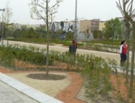 Los árboles mueren en el ambiente artificial de Madrid Río, según ecologistas