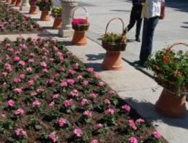 Los vecinos de Pozuelo podrán dejar sus plantas en la 'guardería' durante el verano