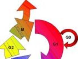 Evolución genética de los tumores por su dinámica de crecimiento