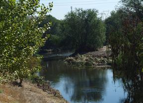 El Ayuntamiento aprueba dos actuaciones para depurar el Manzanares