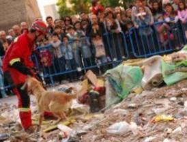 Exhibición de rescate canino en la Avenida Felipe II