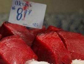 Sanidad aconseja precaución con el pescado azul y algunas hortalizas