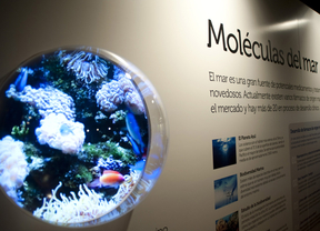 Moléculas de la vida: 50 años de Bioquímica y Biología Molecular