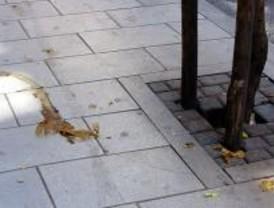 El PSOE dice que 2.000 kilos de excrementos caninos no serán recogidos en agosto