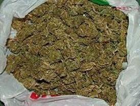 Denuncia a su ex pareja por tener una plantación de marihuana en su chalé