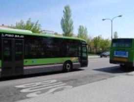 Pinto pretende recortar líneas de autobús