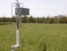 Pérdidas en los cultivos por el ozono ambiental