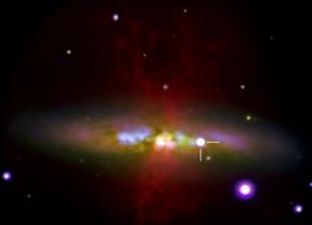 Observaciones de la supernova SN 2014J con el Telescopio William Herschel