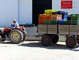 Los agricultores de Fuenlabrada y Móstoles se organizan en patrullas para vigilar sus tierras