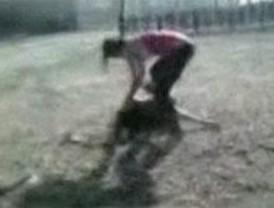 Graban con un móvil una paliza a una joven en Colmenarejo