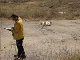 Detenido el asesino de la mujer apuñalada en Fuencarral que paseaba a sus perros