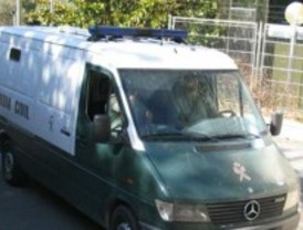 Dos detenidos por daños y robos en un centenar de vehículos