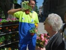 Un millón de plantas de flor embellecerán la ciudad