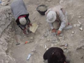 Demuestran que los primeros seres humanos comían animales de gran tamaño