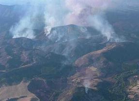 Bomberos madrileños trabajan en la extinción de un incendio en Guadalajara