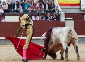 'Agitador', un extraordinario toro bravo de Fuente Ymbro, se le escapa a Paco Ureña