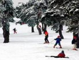 Este miércoles se abre el plazo de inscripción para los viajes a la nieve que organiza el Ayuntamiento en enero