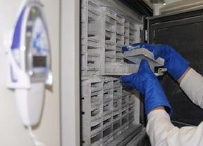 Incorporan pulmones sanos y con patologías de muy difícil acceso para investigación