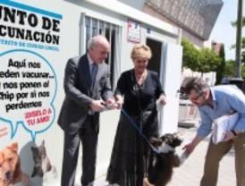 Vacunación de mascotas en Ciudad Lineal