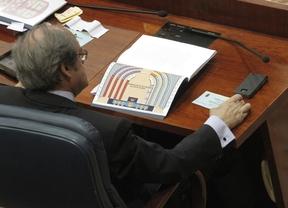 Gabilondo pide que los Plenos de la Asamblea se celebren por la mañana
