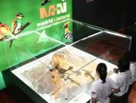 Alcalá acoge una exposición sobre la riqueza ecológica de la región