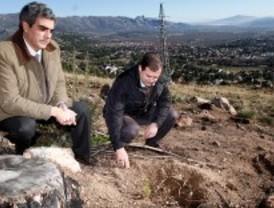 Nueva vida para el Cerro del Castillo tras el incendio de 2009